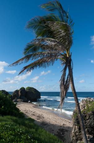 Bathsheba, Barbados